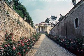 Vincenza